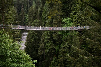 MONTE Blog: Capilano Suspension Bridge