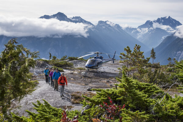 Glaciers and Bears and Views, Oh My!