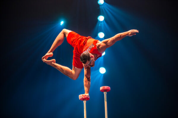 Cirque du Soleil's heart-stopping moments in Luzia