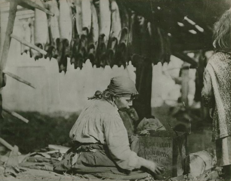 A woman drying salmon (image PN6103). Courtesy of the Royal BC Museum.